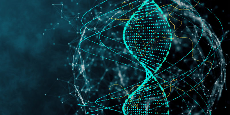 Content Marketing DNA